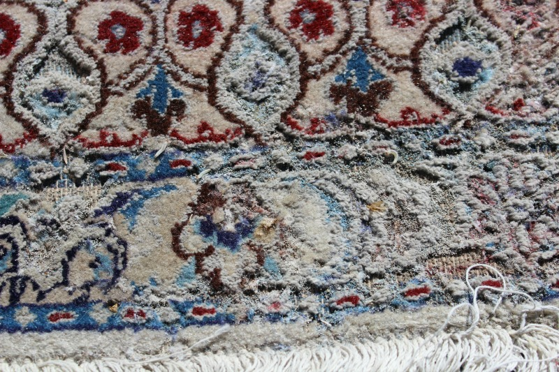 Photos Beware Killer Moths When You Store Your Area Rugs
